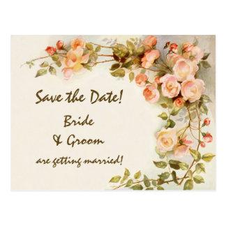 Vintage Wedding, Pink Rose Flowers, Save the Date Postcard