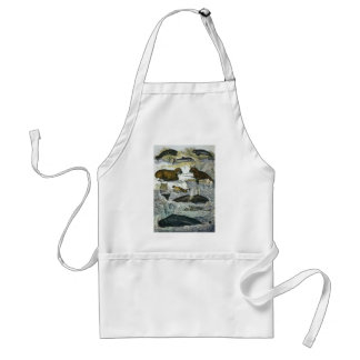 Vintage Whales, Seals and Walruses, Marine Animals Adult Apron