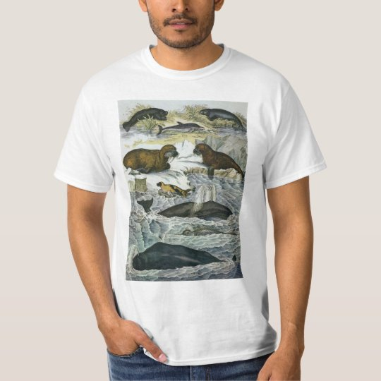 Vintage Whales, Seals and Walruses, Marine Animals T-Shirt