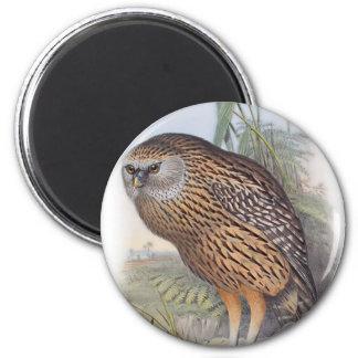 Vintage Whekau extinct laughing owl 2 Inch Round Magnet