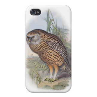 Vintage Whekau extinct laughing owl iPhone 4/4S Covers