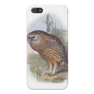 Vintage Whekau extinct laughing owl iPhone SE/5/5s Cover