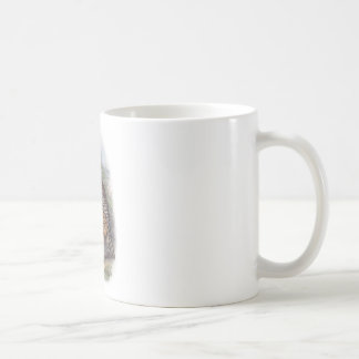 Vintage Whekau extinct laughing owl Coffee Mug