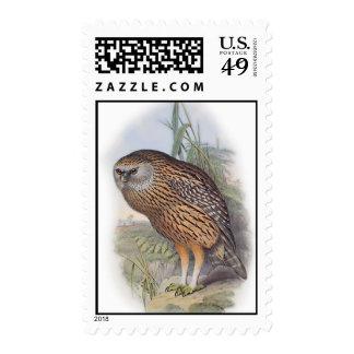 Vintage Whekau extinct laughing owl Postage Stamp