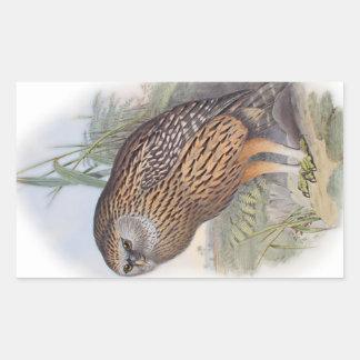 Vintage Whekau extinct laughing owl Rectangular Sticker