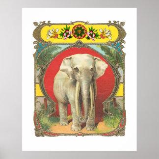 Vintage White Elephant Poster