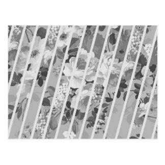 Vintage White Gray Floral Stripes Pattern Postcard