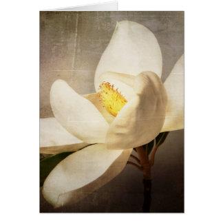 Vintage White Magnolia Tree Flower Brown Parchment Card