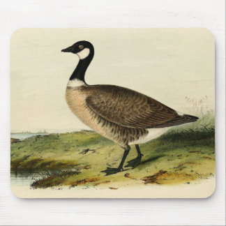 Vintage White Necked Goose Mousepads