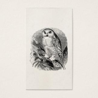 Vintage White Owl Bird Personalized OwlsBirds Business Card