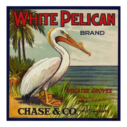 VINTAGE WHITE PELICAN FRUIT PACKING CRATE LABEL