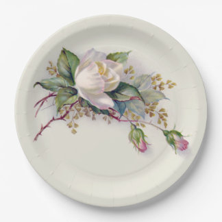 Vintage White & Pink Watercolor Roses Paper Plate2 Paper Plate