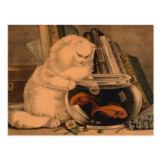 Vintage White Playful Cute Cat Catching Goldfish Postcard