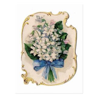 Vintage White Violets Postcard