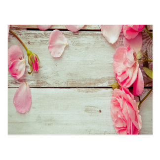vintage white wood wall pink roses, shabby chic postcard