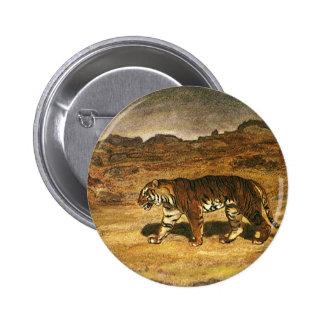 Vintage Wild Animal, Bengal Tiger Roaming Plains Pinback Button