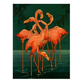 Vintage Wild Animal Birds, Tropical Pink Flamingos Postcard