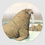 Vintage Wild Animal, Walrus Iceberg in the Arctic Round Sticker