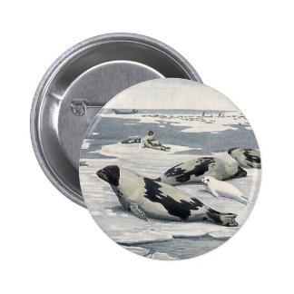 Vintage Wild Animals, Artic Harbor Seals Icebergs 2 Inch Round Button