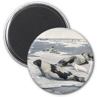 Vintage Wild Animals, Artic Harbor Seals Icebergs 2 Inch Round Magnet