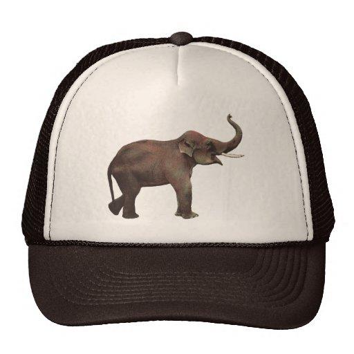 Vintage Wild Animals, Asian Elephant, Good Luck Trucker Hat