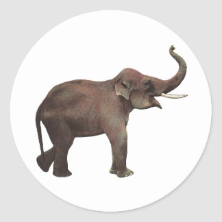 Vintage Wild Animals, Good Luck Asian Elephants Classic Round Sticker