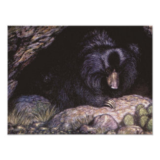 Vintage Wild Animals, Sloth Bears by Louis Sargent Poster