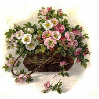 Vintage Wild Roses Photo Cutouts
