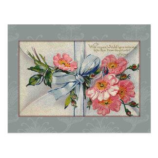 Vintage Wild Roses Valentine Postcard