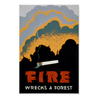 Vintage Wildfire Prevention   Poster