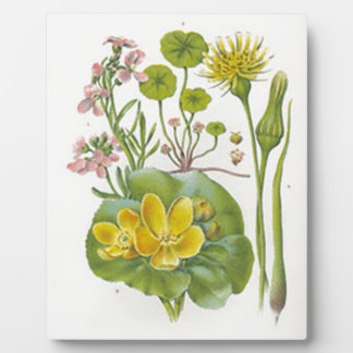 Vintage Wildflowers Plaque