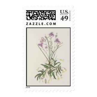 Vintage Wildflowers: Purple Wildflowers Postage