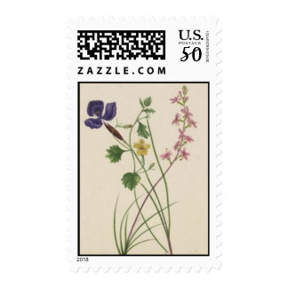 Vintage Wildflowers: Purple Yellow Pink Postage