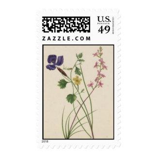 Vintage Wildflowers: Purple Yellow Pink Postage Stamp