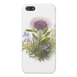 Vintage Wildflowers Thistle Cases For iPhone 5