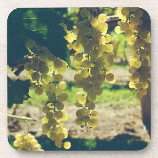 Vintage Winery Grapes Beverage Coaster
