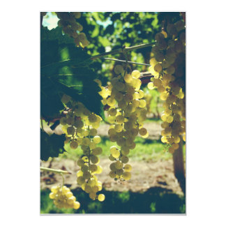 Vintage Winery Grapes Card