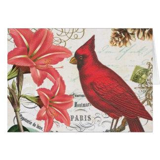 vintage winter cardinal cards