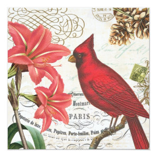 vintage winter cardinal card