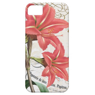 vintage winter cardinal iPhone 5 cover