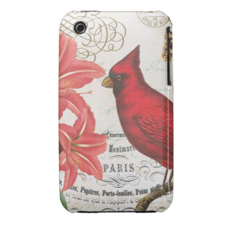 vintage winter cardinal iPhone 3 Case-Mate cases