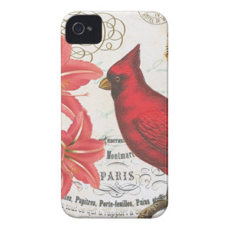 vintage winter cardinal iPhone 4 cover