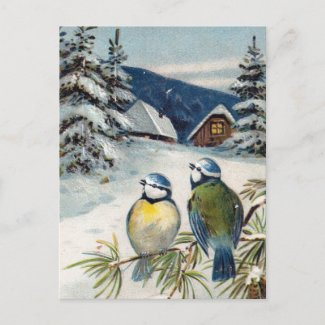 Vintage Winter Postcard With Birds postcard