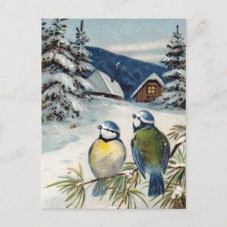 Vintage Winter Postcard With Birds postcard