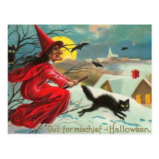 Vintage Witch and Cat Postcard