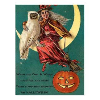 Vintage Witch and Owl Postcard