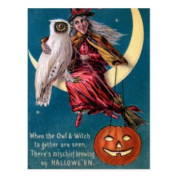 Halloween Themed Vintage Witch pumpkin owl Halloween postcard