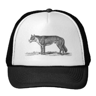 Vintage Wolf Illustration -1800 s Wolves Template Hat
