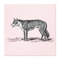 Vintage Wolf Illustration -1800's Wolves Template Canvas Print