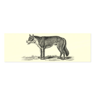 Vintage Wolf Illustration -1800's Wolves Template Mini Business Card